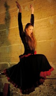 flamenc'a fil de fer equilibre echassiers spectacle parade animation cirque evenementiel (3)