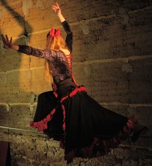 flamenc'a fil de fer equilibre echassiers spectacle parade animation cirque evenementiel (4)