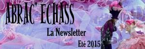 bandeau newsletter été 2015