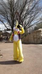 Lapinous' Foufous echassiers rebondissants loufoques parade animation evenementiel lapins fantaisie extravagance sautillants mascottes paques (19)