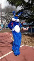 Lapinous' Foufous echassiers rebondissants loufoques parade animation evenementiel lapins fantaisie extravagance sautillants mascottes paques (22)