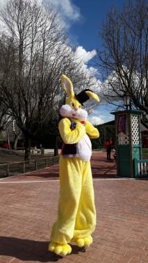Lapinous' Foufous echassiers rebondissants loufoques parade animation evenementiel lapins fantaisie extravagance sautillants mascottes paques (24)