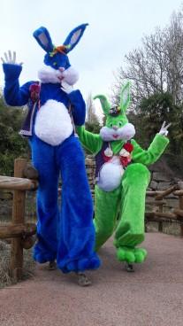 Lapinous' Foufous echassiers rebondissants loufoques parade animation evenementiel lapins fantaisie extravagance sautillants mascottes paques (33)
