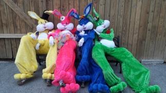 Lapinous' Foufous echassiers rebondissants loufoques parade animation evenementiel lapins fantaisie extravagance sautillants mascottes paques (58)