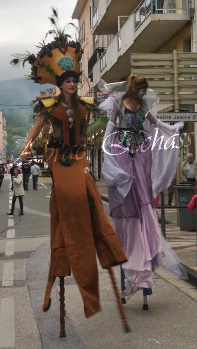 4 elements echassiers eau terre air feu sirene elfe maya cracheur de feu parade animation spectacle carnaval magique colores (34)