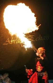 4 elements echassiers eau terre air feu sirene elfe maya cracheur de feu parade animation spectacle carnaval magique colores (42)