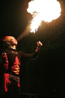 4 elements echassiers eau terre air feu sirene elfe maya cracheur de feu parade animation spectacle carnaval magique colores (43)