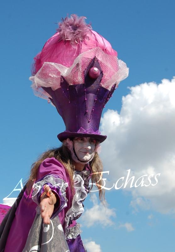 bulles de bonheur echassier parade colores festifs carnaval grandiose crinolines bulles de savon rose girly kawai (21)