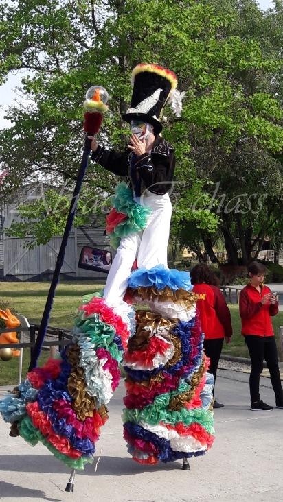 clowns en ciel echassiers colores oiseaux fleurs festifs parade animation carnaval evenementiel bulles de savon danse chapeau vertigineux froufro (98)