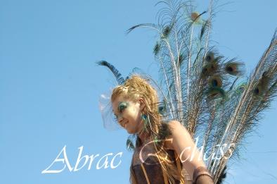 echass et toiles echassiers dali femme paon plumes de paon crinoline parade animation evenementiel grandiose magnifiques (13)