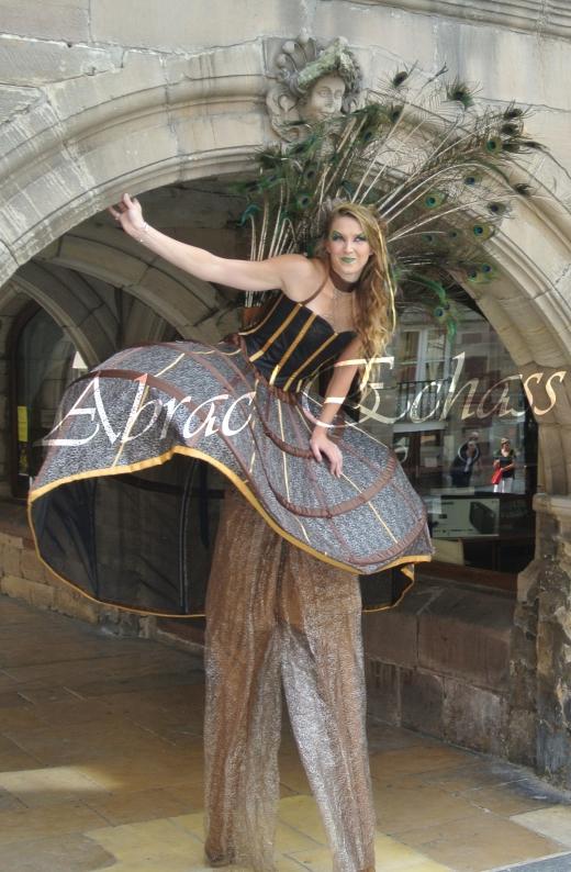 echass et toiles echassiers dali femme paon plumes de paon crinoline parade animation evenementiel grandiose magnifiques (2)