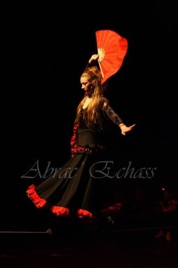 flamenca danse sur fil de fer danse flamenco spectacle rouge et noir cirque animation evenementiel guitare espagnol gitan (23)