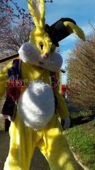 Lapinous' Foufous echassiers rebondissants loufoques parade animation evenementiel lapins fantaisie extravagance sautillants mascottes paques (2)
