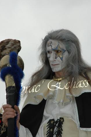 le songe de loeridis echassiers feeriques contes et merveilles spectacle fantastique parade animation elfes fees dragon loup echasses poes (13)