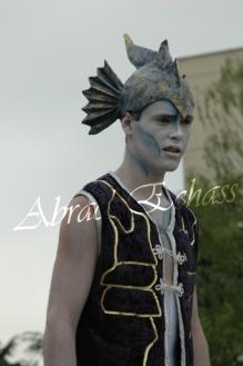 le songe de loeridis echassiers feeriques contes et merveilles spectacle fantastique parade animation elfes fees dragon loup echasses poes (18)