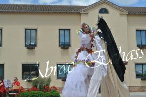 le songe de loeridis echassiers feeriques contes et merveilles spectacle fantastique parade animation elfes fees dragon loup echasses poes (5)