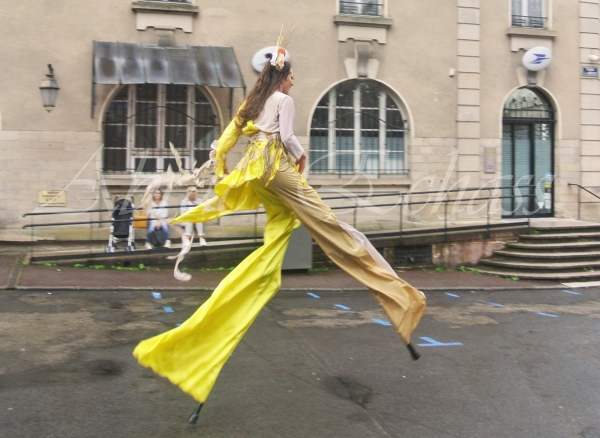 nuité jour echassieres dualite spectacle animation parade bleu et jaune danse crinoline (9)