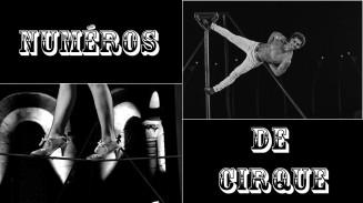 numeros cirque spectacle evenementiel animation